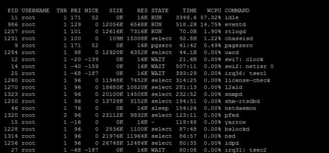 Showing Software Processes บน Firewall Juniper SRX1400